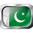 Pakistan shiny button flag vector illustration. Isolated abstrac — Stock Vector #7366891