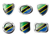Tanzania set shiny buttons and shields of flag with metal frame — Stock Vector