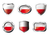 Poland set shiny buttons and shields of flag with metal frame - — Stock Vector