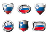 Slovenia set shiny buttons and shields of flag with metal frame — Stok Vektör