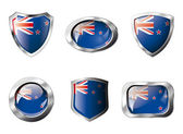 New zealand set shiny buttons and shields of flag with metal fra — Stock Vector