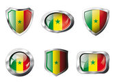 Senegal set shiny buttons and shields of flag with metal frame - — Stock Vector