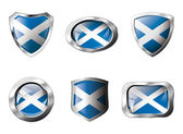 Scotland set shiny buttons and shields of flag with metal frame — Vettoriale Stock