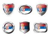 Serbia set shiny buttons and shields of flag with metal frame - — Stock Vector