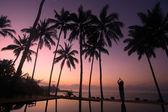 Yoga under the coconut trees — Stock Photo
