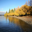 Lake view at Queenstown — Stock Photo