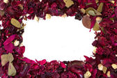 Frame of Dried Flowers — Stock Photo