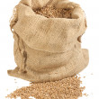 Stock Photo: Sack of wheat grains