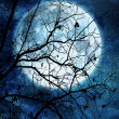 Tree branches against full moon — Stock Photo