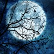 Stock Photo: Tree branches against full moon