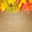 Autumn frame on canvas background — Stock Photo