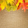 Autumn frame on canvas background - Stock Photo