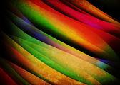 Linee di colore — Foto Stock