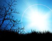 黑蓝色背景上的树 — 图库照片