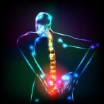 Human backbone in x-ray — Stock Vector