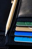 Travel wallet — Stock Photo