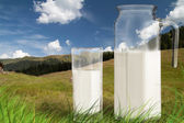 Milk jug and glass on the grass — Stock Photo