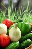 Vegetable in the basket outdoor in the grass — Stock Photo