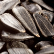 Sunflower seeds — Stock Photo #7840242