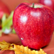 Red fresh apples — Stock Photo #7840299