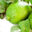Lime fruit — Stock fotografie