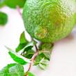 Lime fruit — Stock Photo