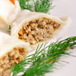 Meat dumplings — Stockfoto