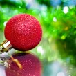 Holidays — Stock Photo #7841725