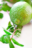 Lime obst — Stockfoto