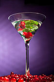 Berries alcohol coctail — Stock Photo