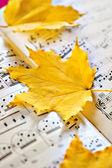Folha de outono — Foto Stock