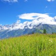 Alps Chamonix — Stock Photo #7613635