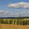 Finnish agriculture — Stock Photo #7837411