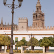 The Giralda tower — Stock Photo