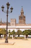 The Giralda tower — Stock Photo