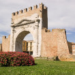Arch of Augustus in Rimini — Stock Photo