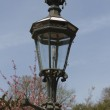 Ornate Lamp Windsor Castle street light. — Stock Photo #7540329