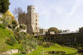 Windsor Castle Garden — Stock Photo