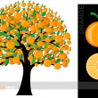 Illustration of a cartoon orange tree isolated on white background — Stock Vector