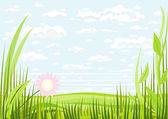 Grass clouds and sky background — Stock Vector