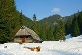 Tatry mountains — Stock Photo