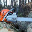Chain saw — Stock Photo