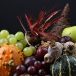 Autumn cornucopia — Stock Photo #7413253