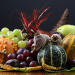 Autumn cornucopia — Stock Photo