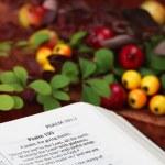 Thanksgiving Bible — Stock Photo