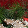 Gingerbread cookies and pine twigs — Stock Photo