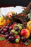 Cornucopia and the Bible — Stockfoto