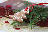 Christmas gingerbread and the Bible — Stock Photo