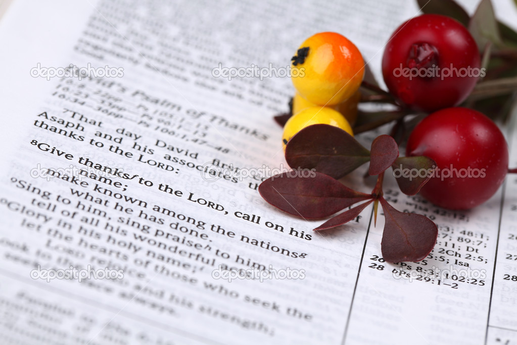 Thanksgiving arrangement with the Bible open to 1 Chronicles 16:8 — Stock Photo #7413379