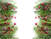 Cone and berry Christmas frame — Stock Photo